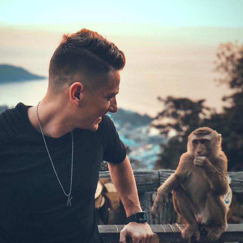 Monkey photobomb