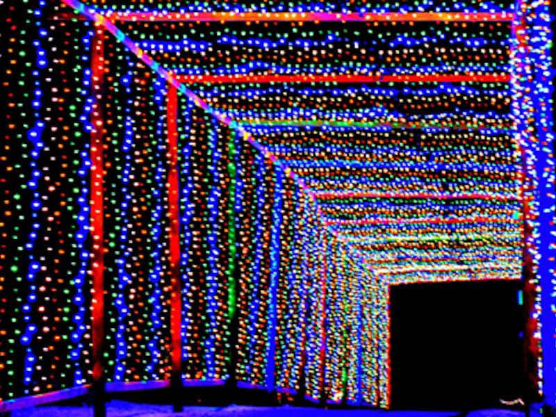 Christmas Carnival of Lights