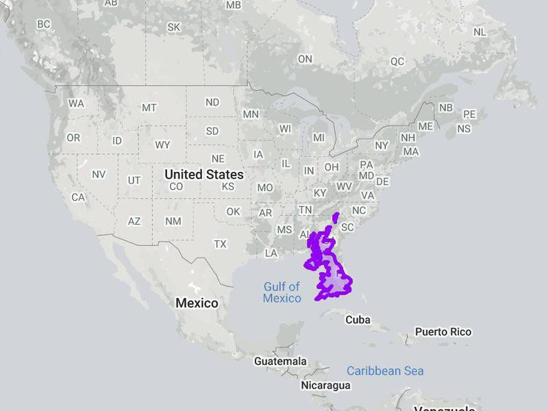 The size of England compared to the U.S.