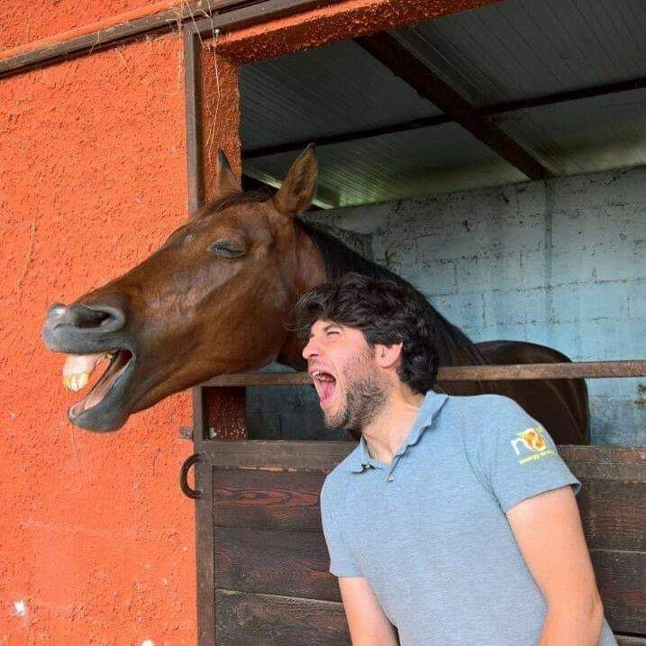 Horse Smiling with Person