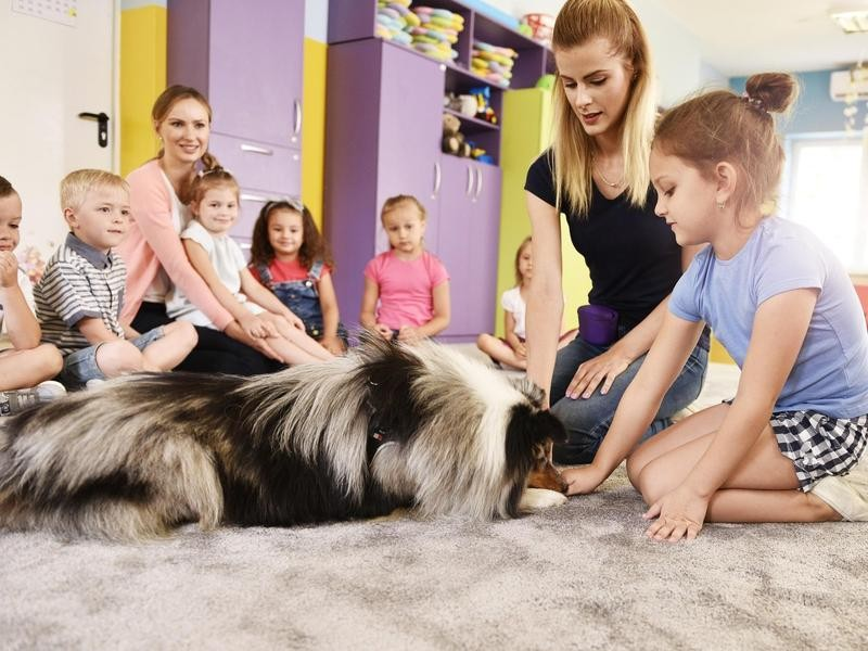 Therapy Dog Working with Kids