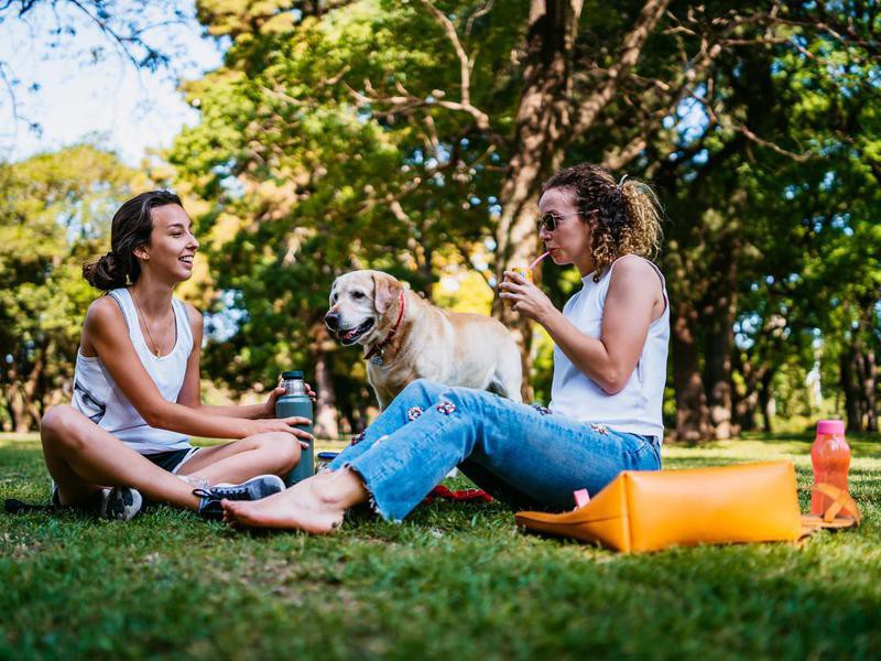 Two women and dog relaxing in park