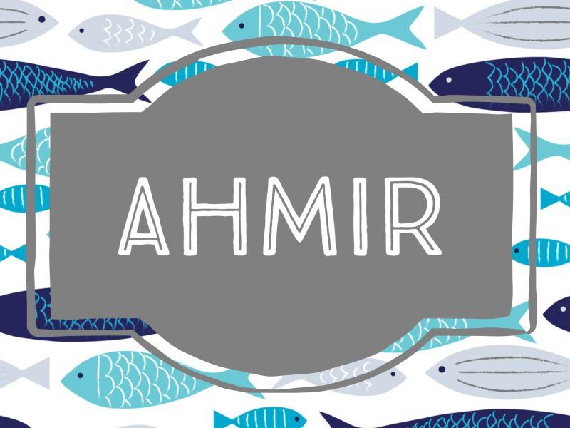 Ahmir