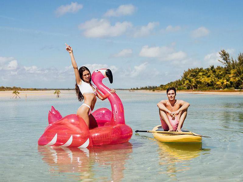 Pink Flamingo Raft