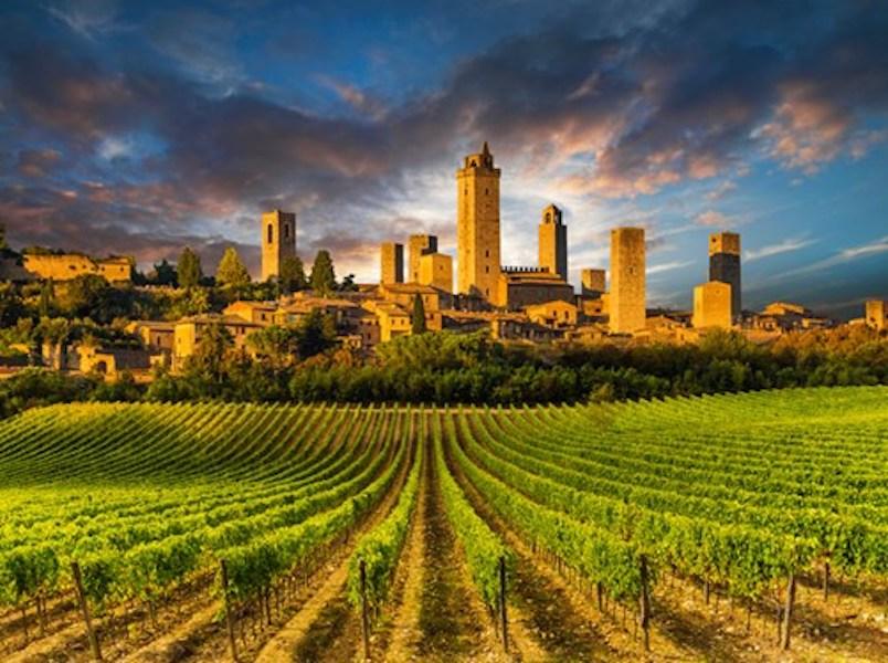 Tenuta Torciano Vineyards