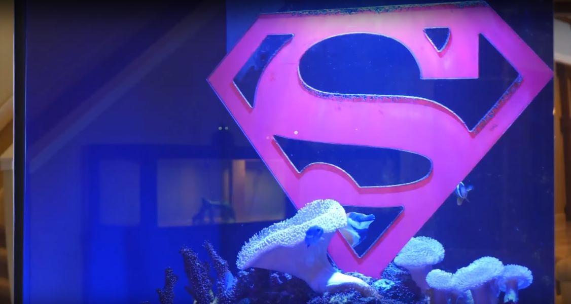 Shaq's Superman logo in his aquarium