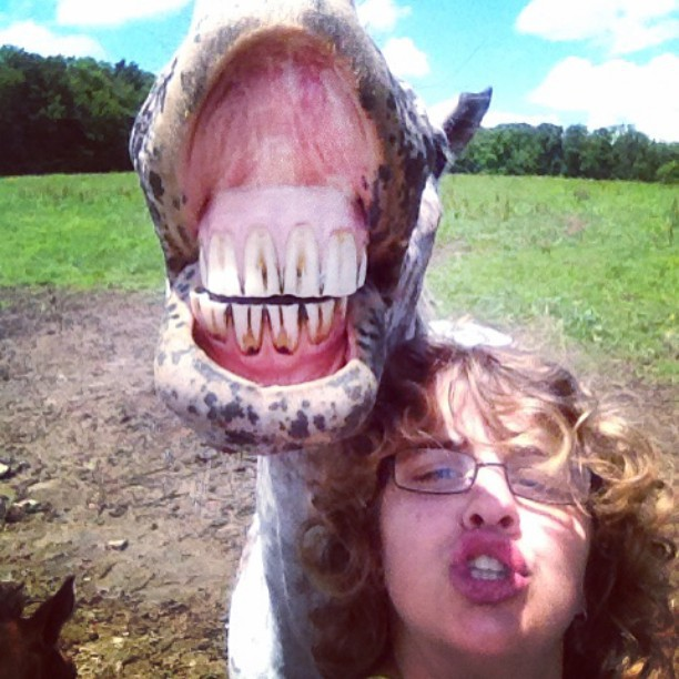Selfie With a Boy and His Smiling Horse