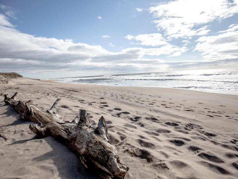 Montauk Beach in Long Island
