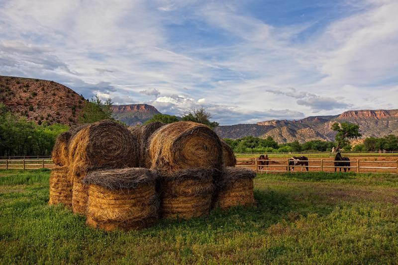 west creek hay
