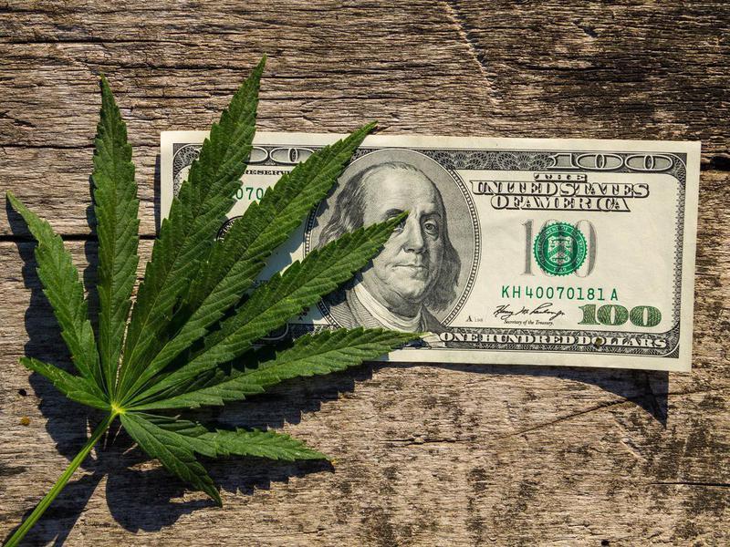 Cannabis accountant