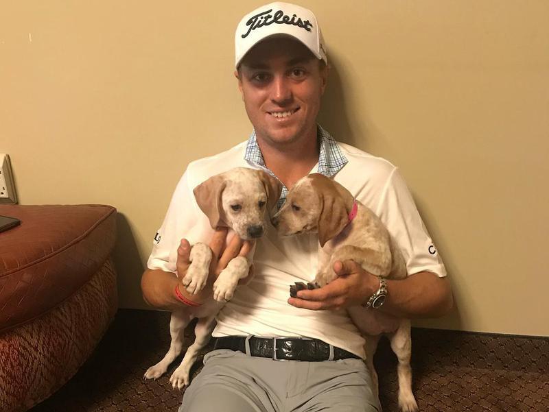 Justin Thomas and puppies