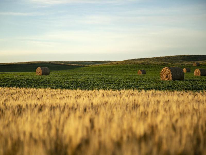 North Dakota countryside