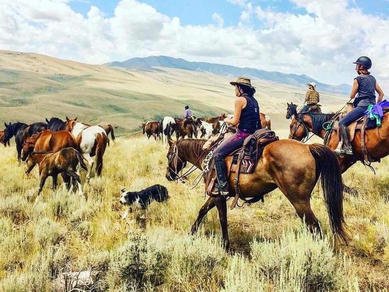 Silver Spur Ranch