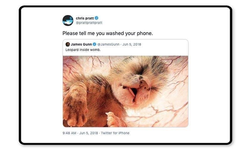 Chris Pratt tweet about a baby leopard