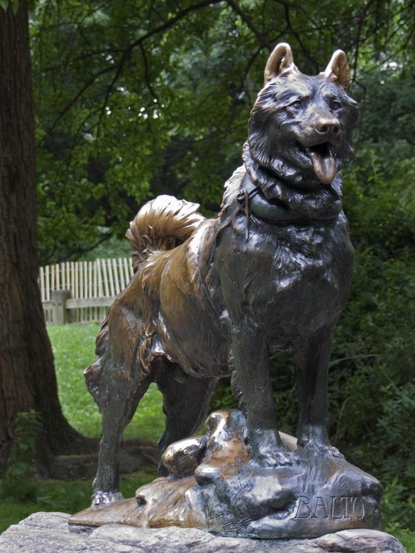 Statue of Balto the rescue dog in Central Park, New York