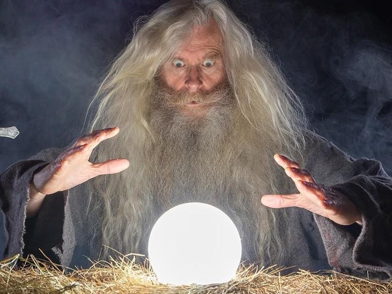 Wizard at Renaissance Fair