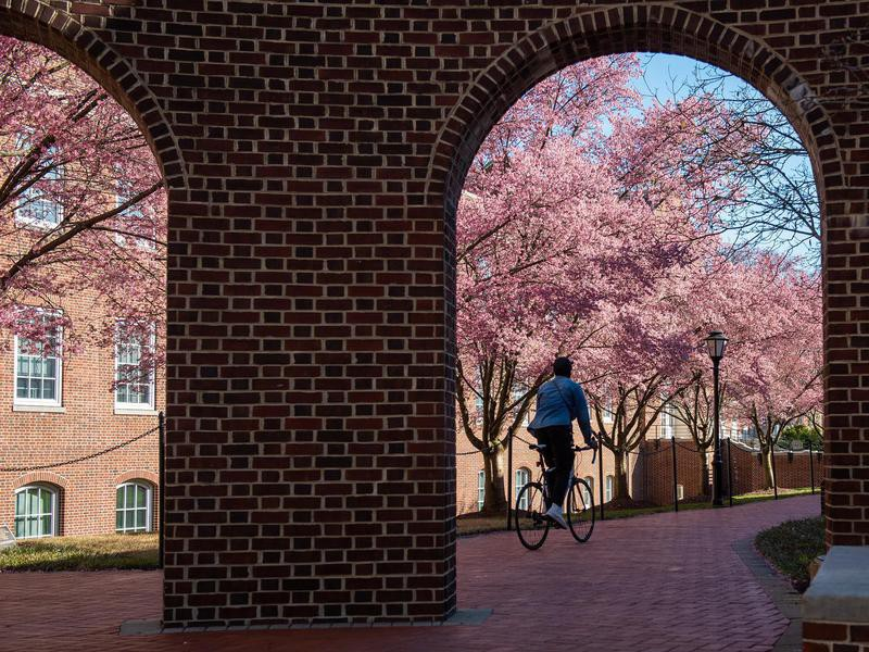 Student at University of Delaware