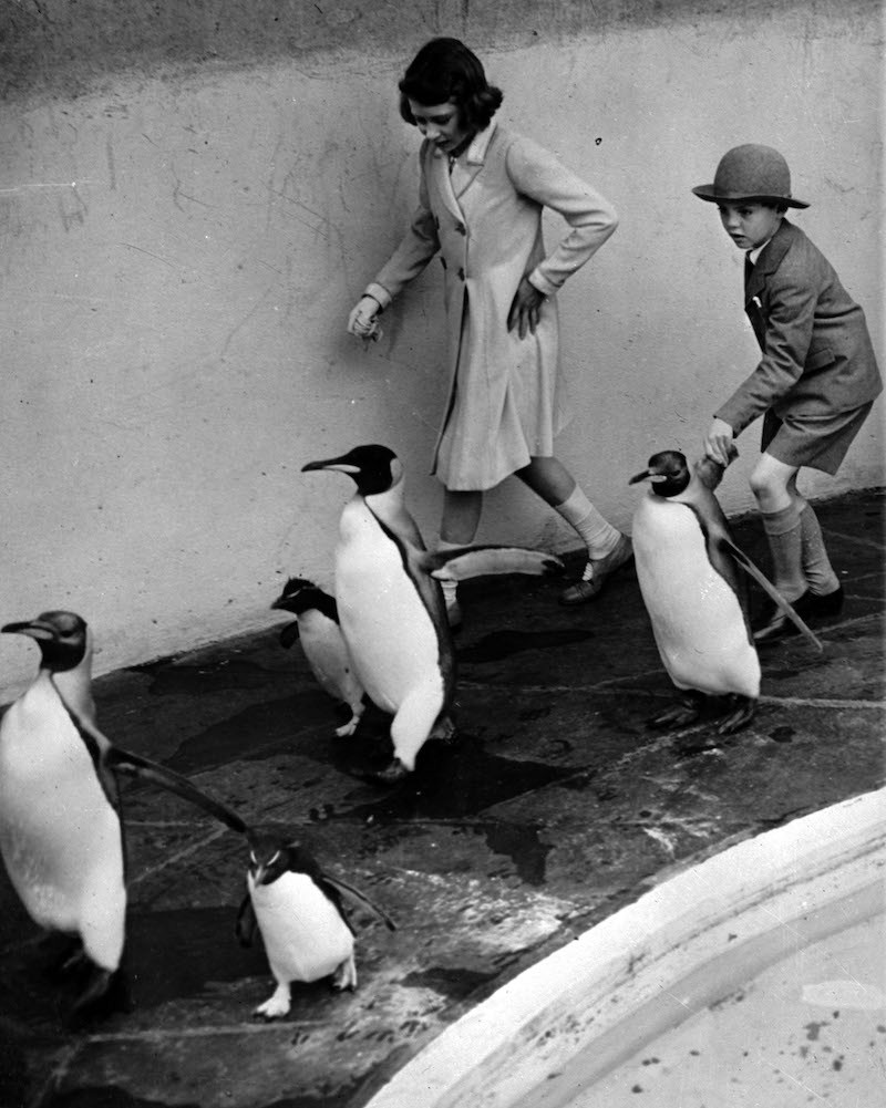 Princess Elizabeth with penguins