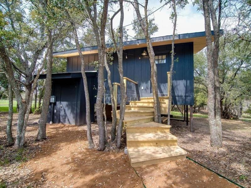 sapling treehouse