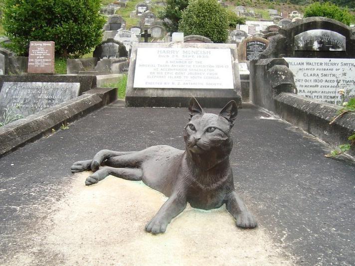 Monument to Antarctic exploration cat in New Zealand