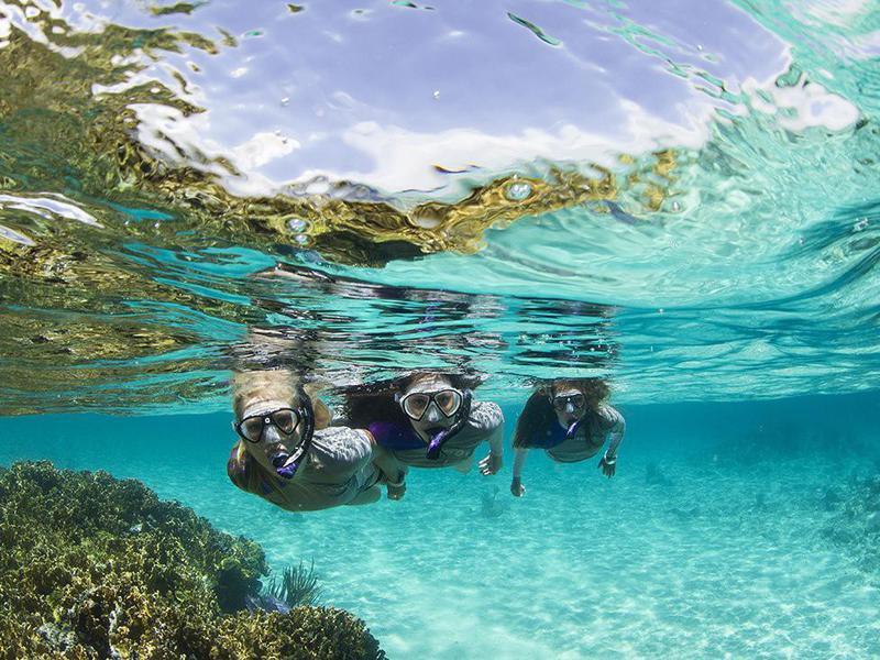 Tourists snorkeling