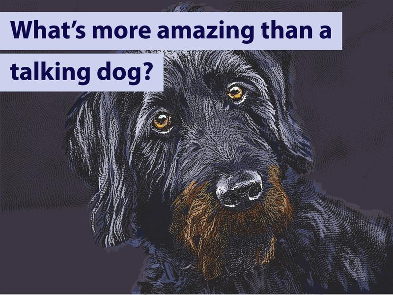 Talking Dog Joke