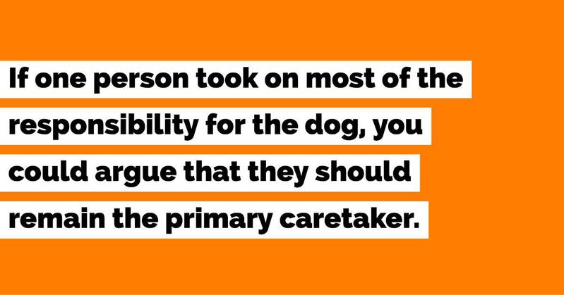 The Primary Caregiver Gets the Dog in a Divorce