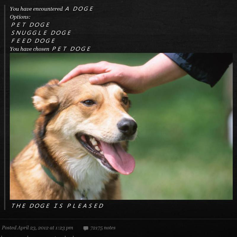 Doge meme on Tumblr