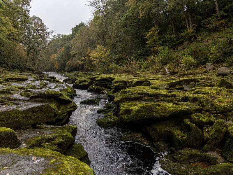 River Wharfe and the Strid in England