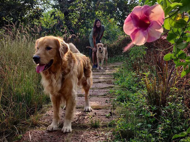 priyanka and dogs