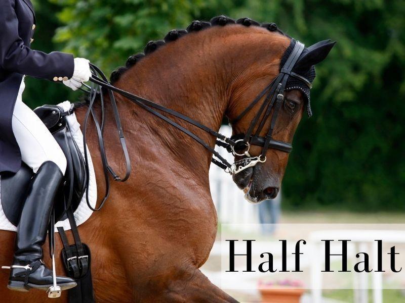 Half Halt