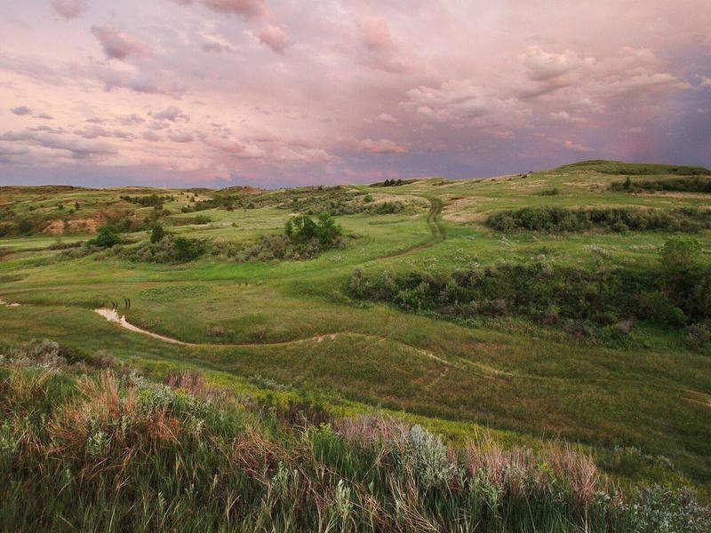 Buffalo Gap Ranch