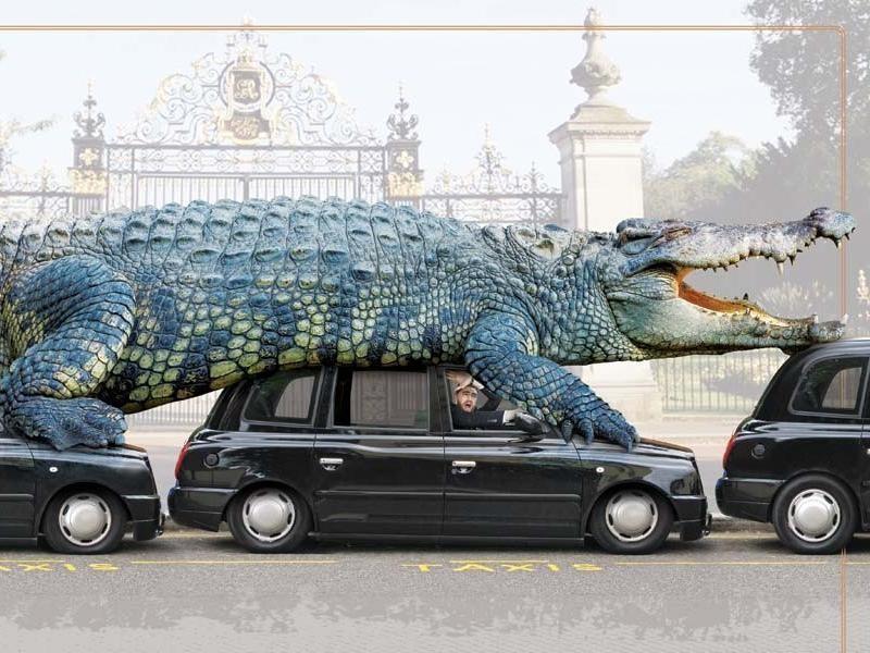 The Largest-Living Captive Crocodile