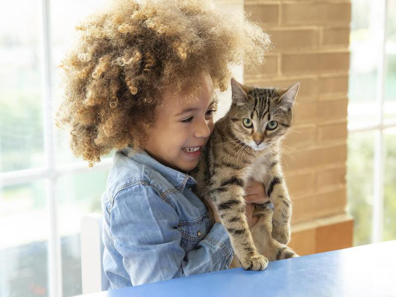 girl playing with cat