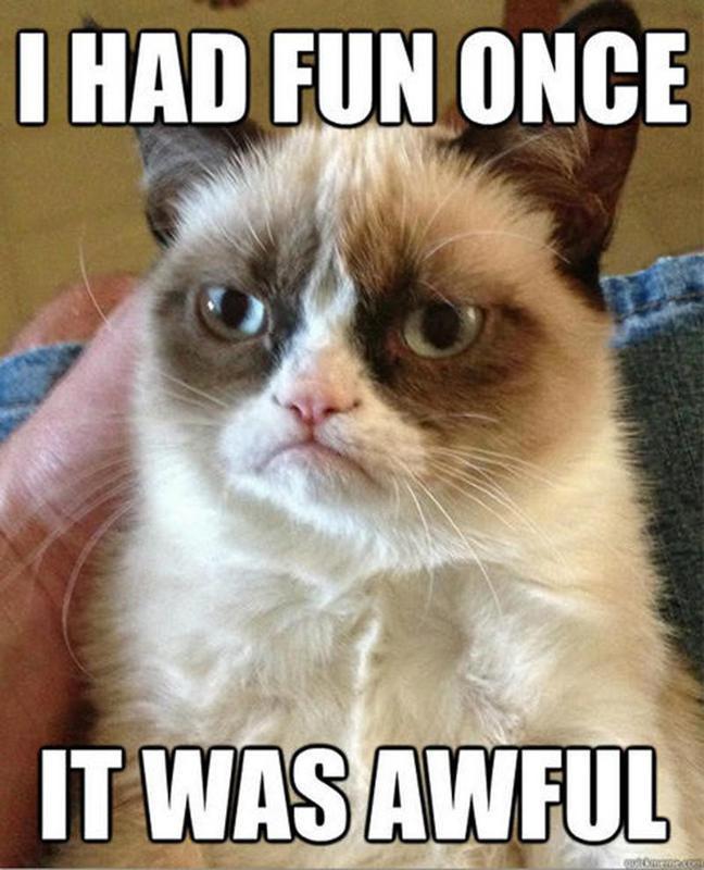 Grumpy cat is no fun