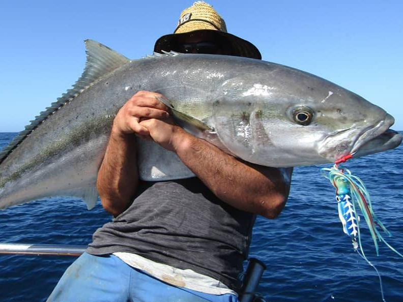 Man fishing on a boat catches a big fish