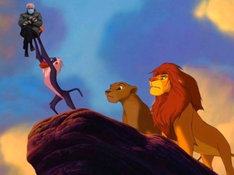 Bernie Sanders in The Lion King