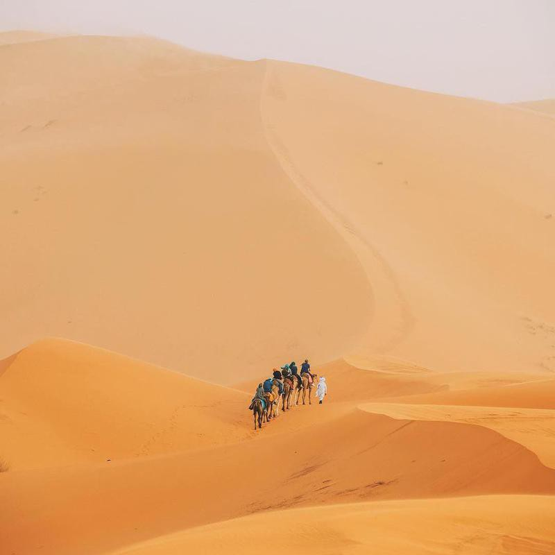 People crossing the desert by camel