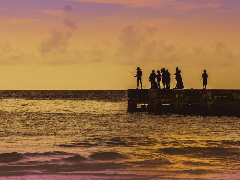 Saltwater fishing at Anna Maria Island