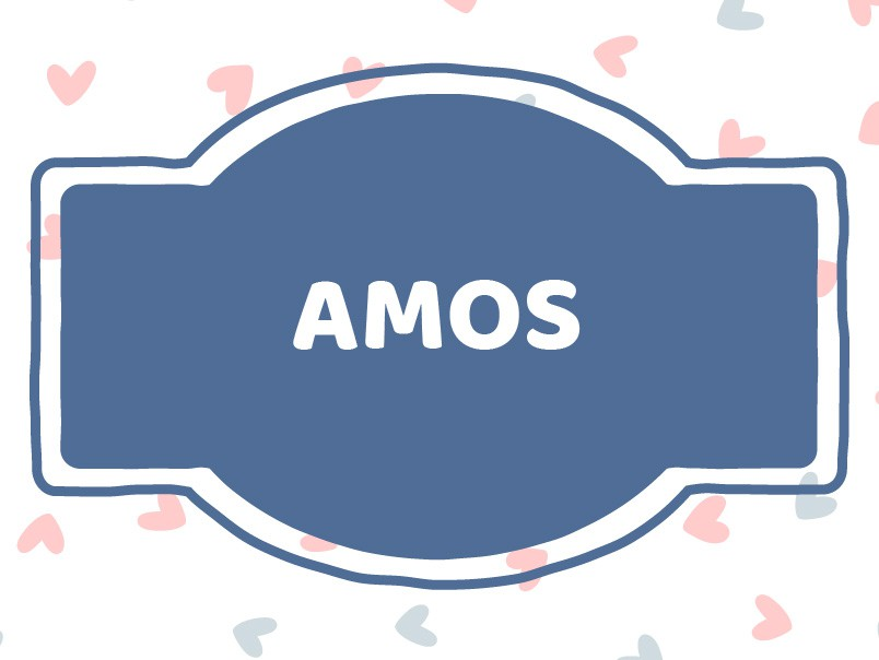 Unique Baby Boy Names that Start with 'A': Amos