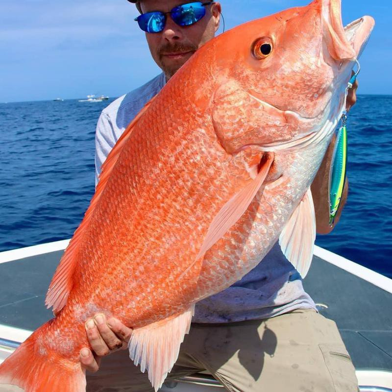Red snapper fishing in the ocean