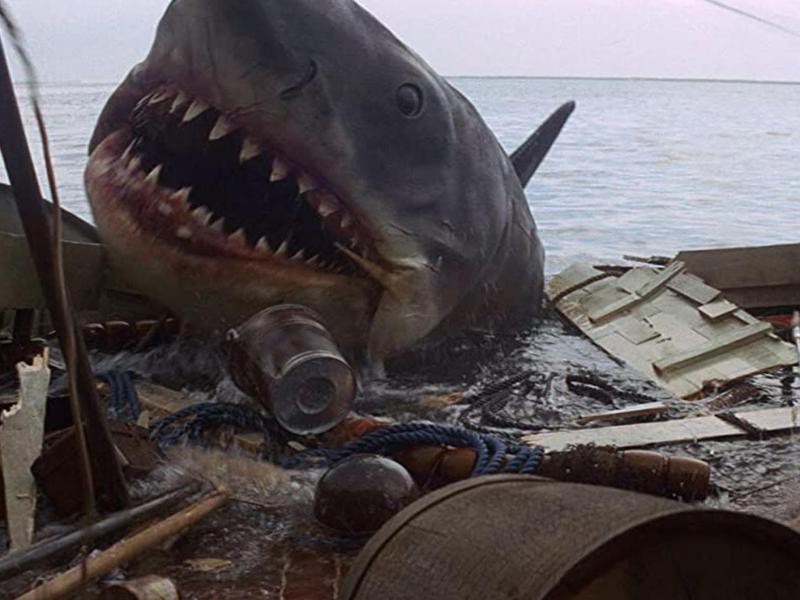 The Shark from Jaws