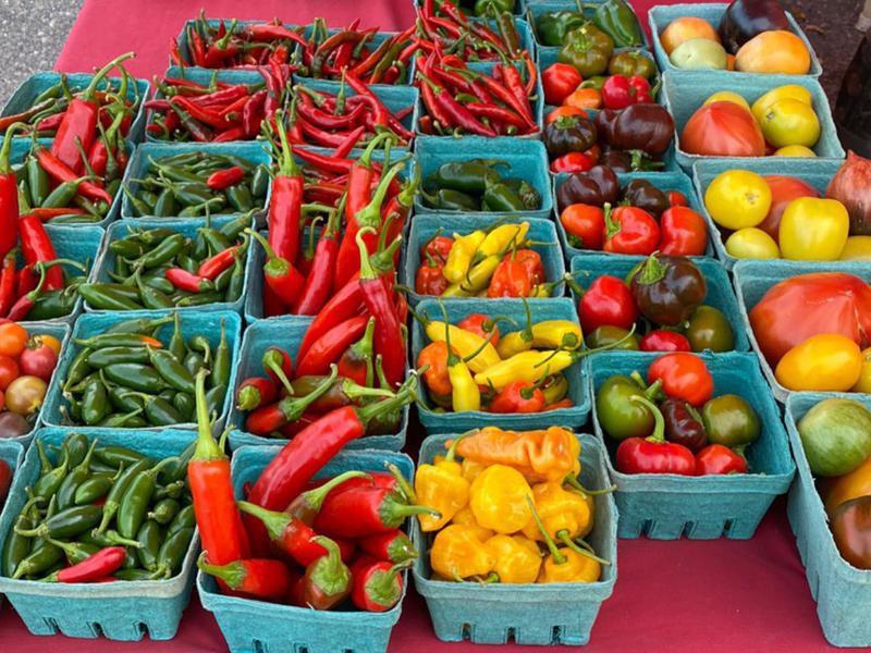 Burlington's Farmers' Market