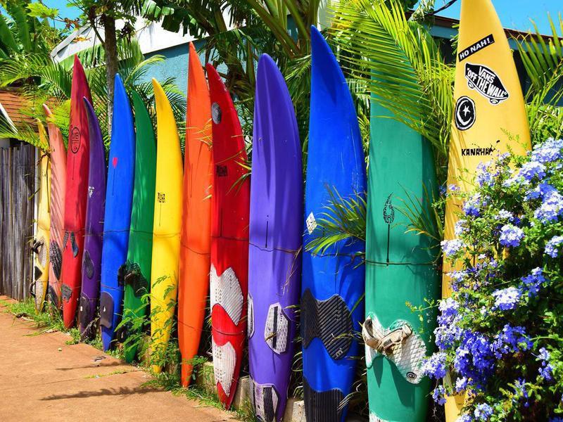 Surf boards in Maui, Hawaii