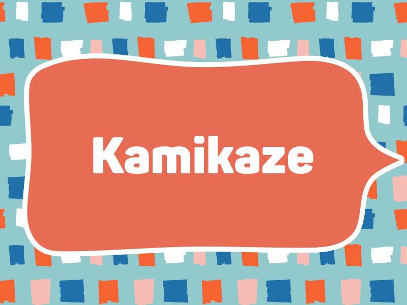 1993: Kamikaze