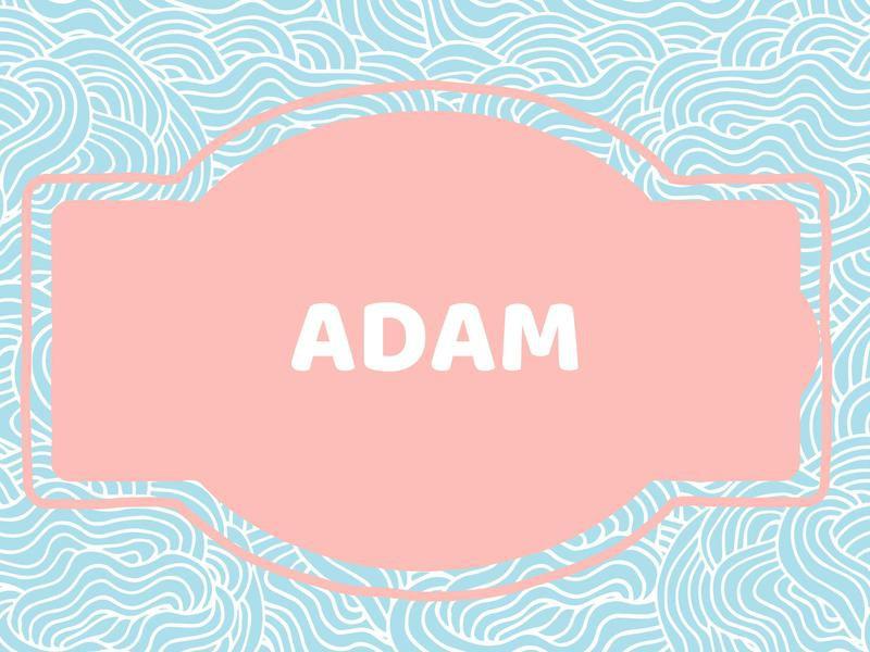 Unique Baby Boy Names: Adam