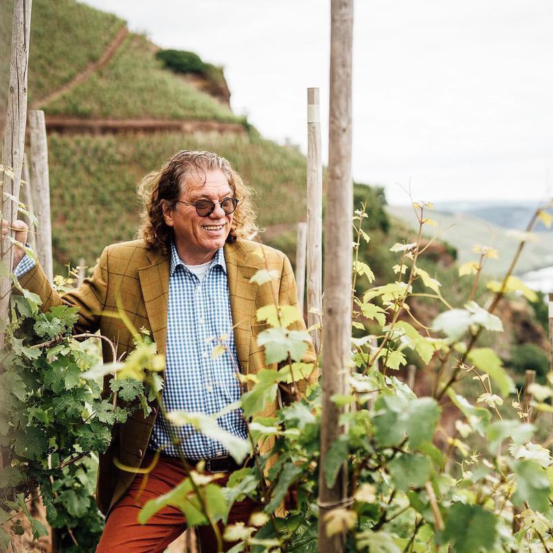 Dr. Loosen vineyard