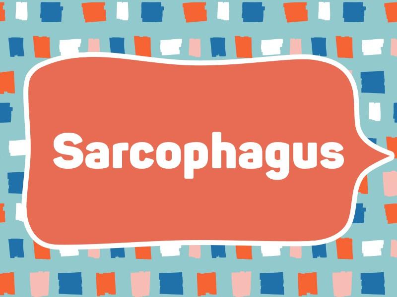 1981: Sarcophagus