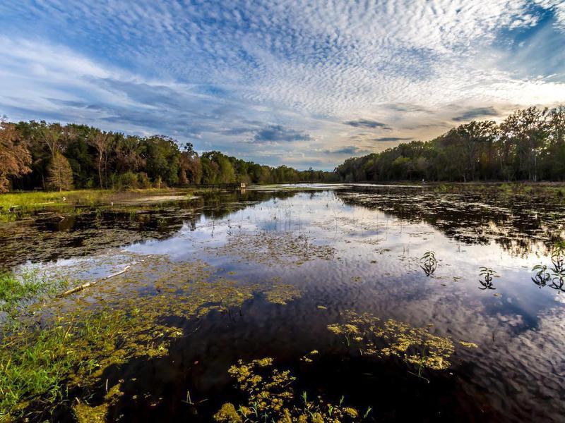 Creekfield Lake, Texas
