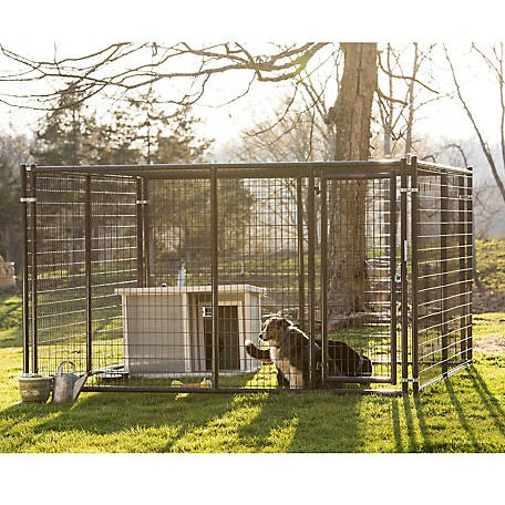 Tractor Supply dog kennel: Tarter Farm and Ranch Equipment Heavy-Duty Dog Kennel